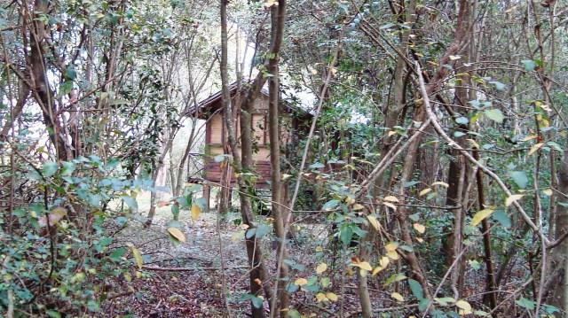 cabaña2